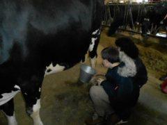 De respiro a la granja